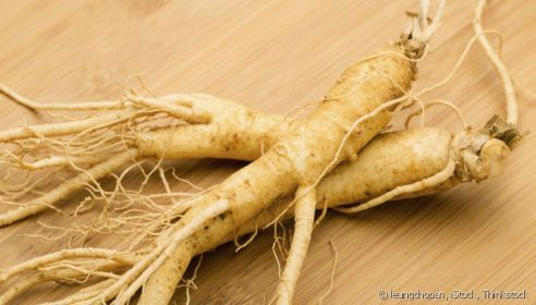 733-le-ginseng-un-allie-de-premier-choix-article_normal_image-1