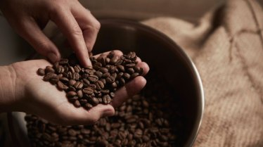 safe-to-eat-coffee-beans-1296x728-feature
