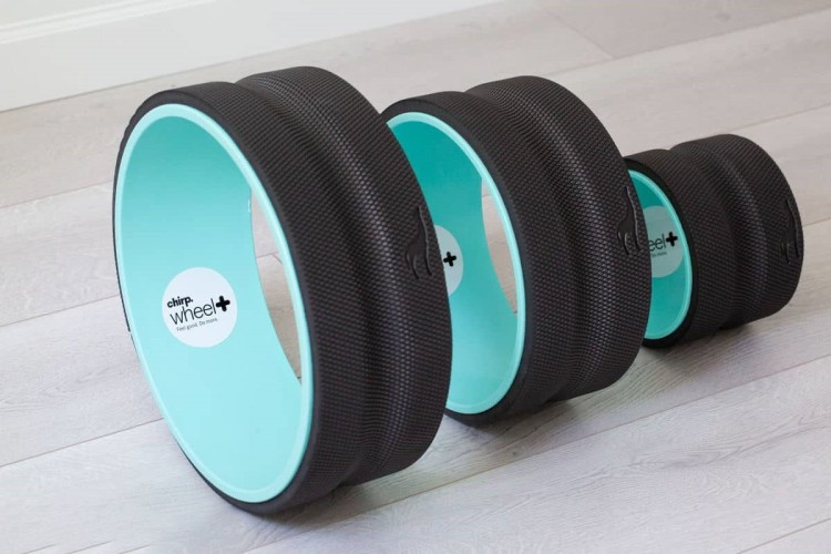 Chirp-Wheel-Plus-Review